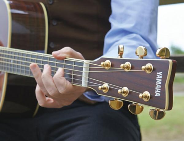 Yamaha Acoustic Guitar Rebate